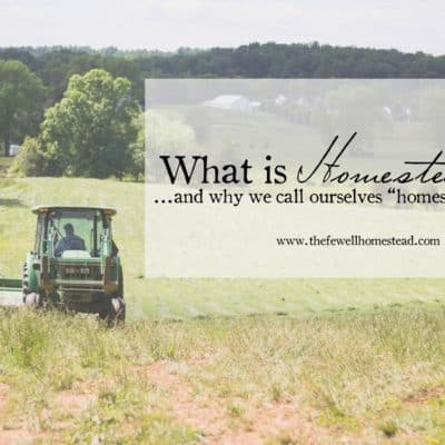 {What Is Homesteading?} And Why We Call Ourselves Homesteaders