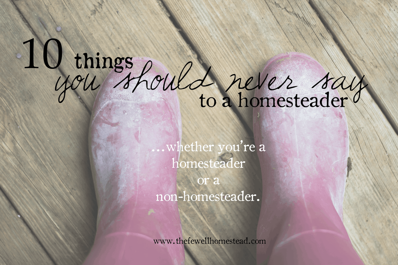 10 Things You Should Never Say to a Homesteader
