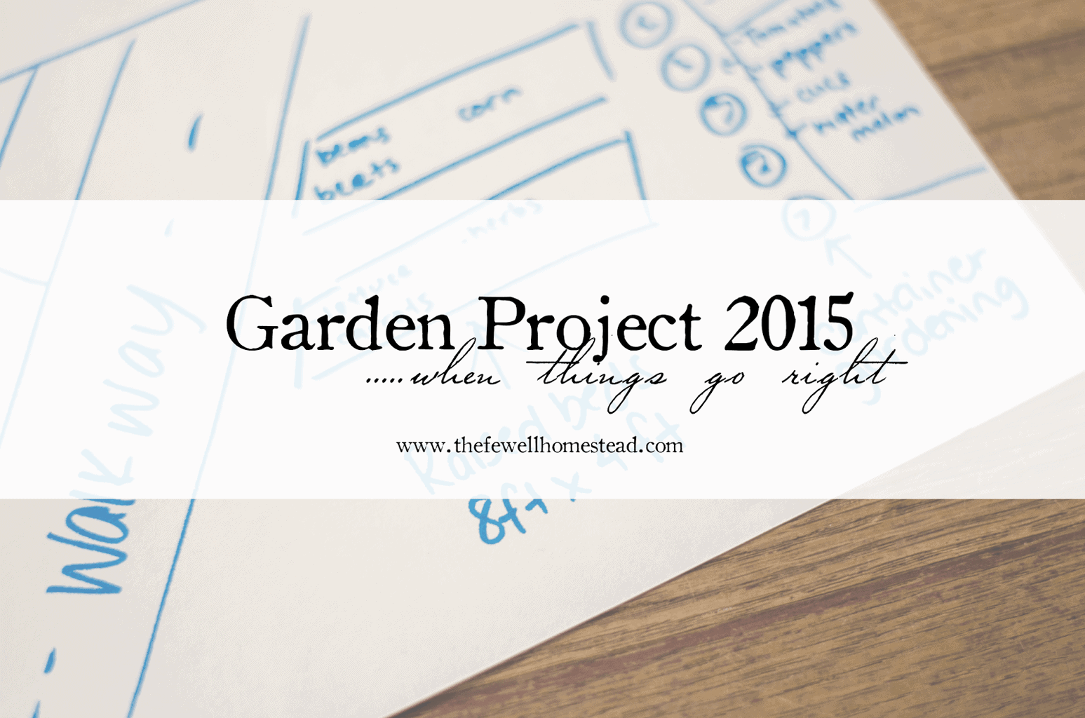 {Garden Project 2015}…when things go right.