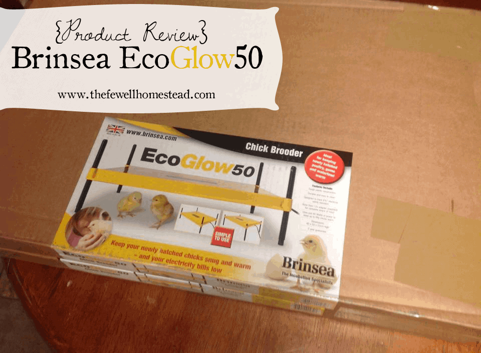 {Product Review} Brinsea Ecoglow 50
