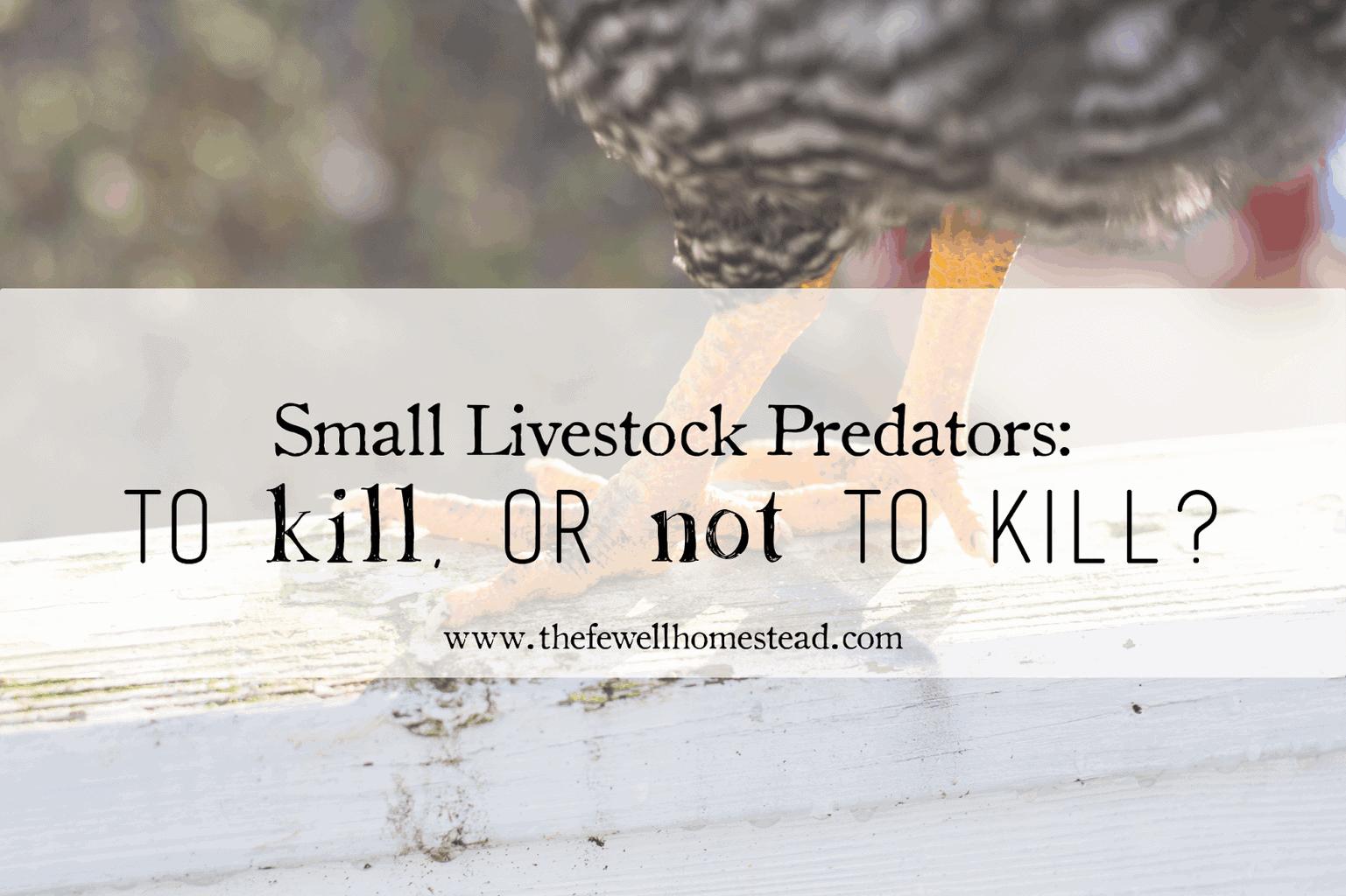 Small Livestock Predators: To kill, or not to kill?