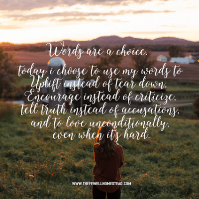 Semi Wordless Wednesday | Words are a Choice