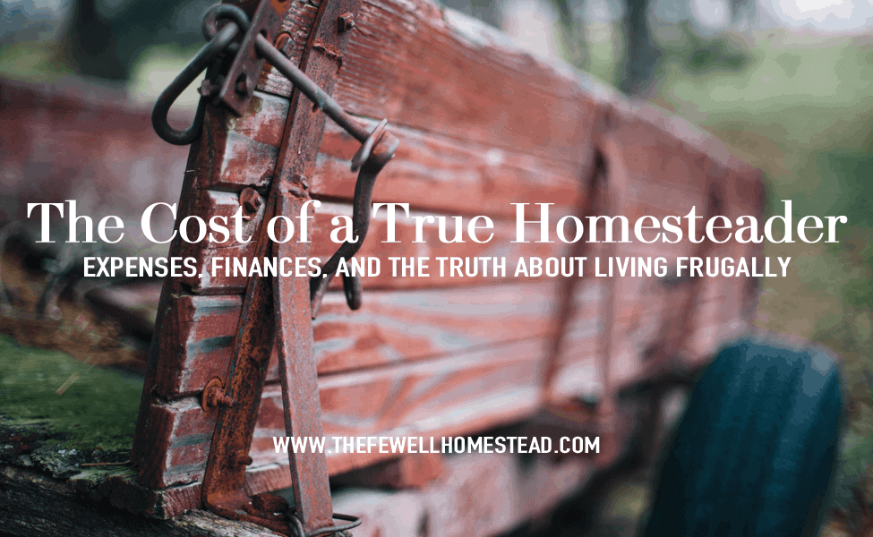 The Cost of Homesteading