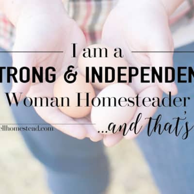 I Am a Strong & Independent Woman Homesteader | And that's ok….