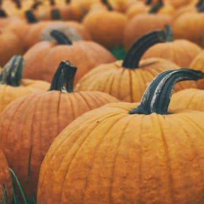 Choosing to Be Thankful