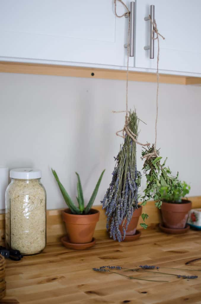 drying your own herbs