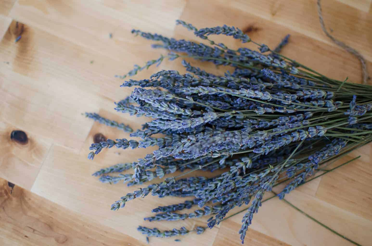Growing and Drying Your Own Herbs (with video)