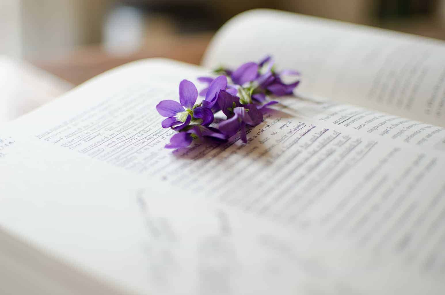 Herbal Remedies Aren't God