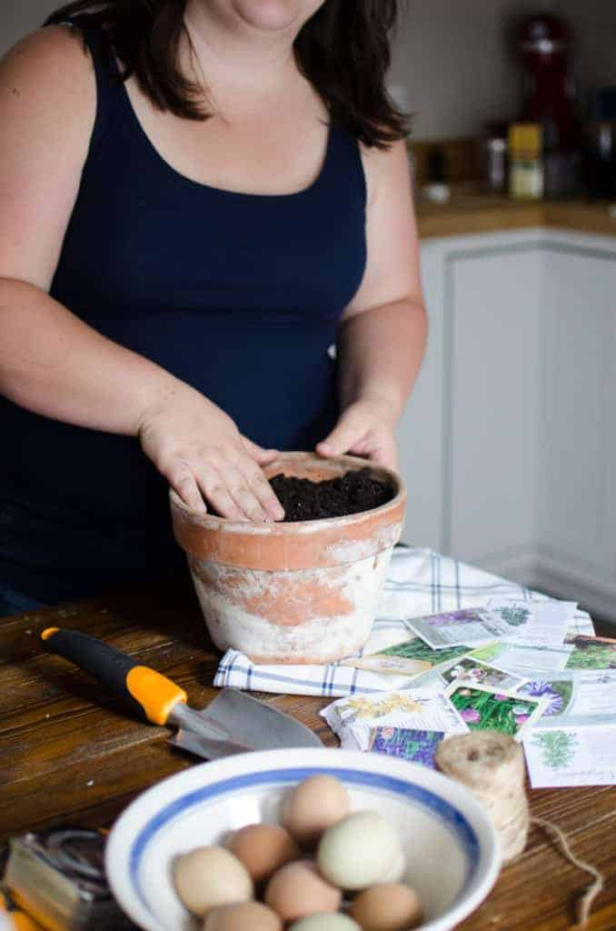 10 Ways to Make Money on Your Homestead