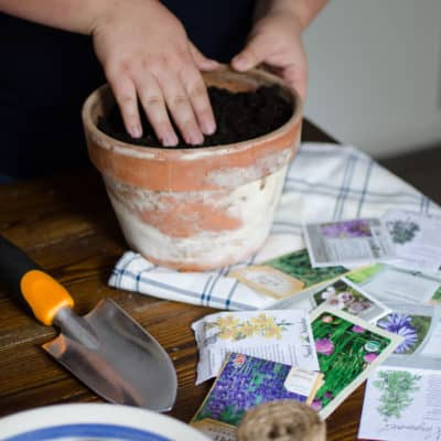 Starting Herb Seeds and Homemade Potting Soil