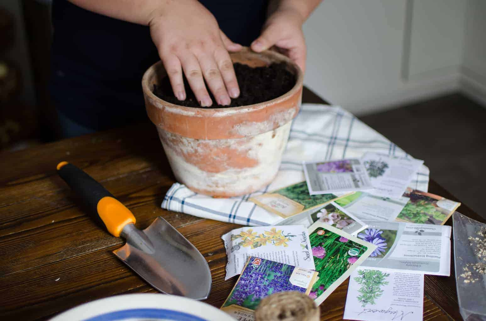 Staring Herb Seeds + Homemade Potting Soil Recipe