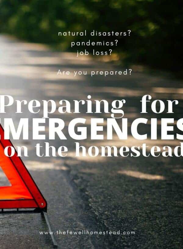 Preparing for Emergencies on the Homestead