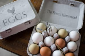Is It Safe to Reuse Egg Cartons? Yes!   Eggs and Salmonella