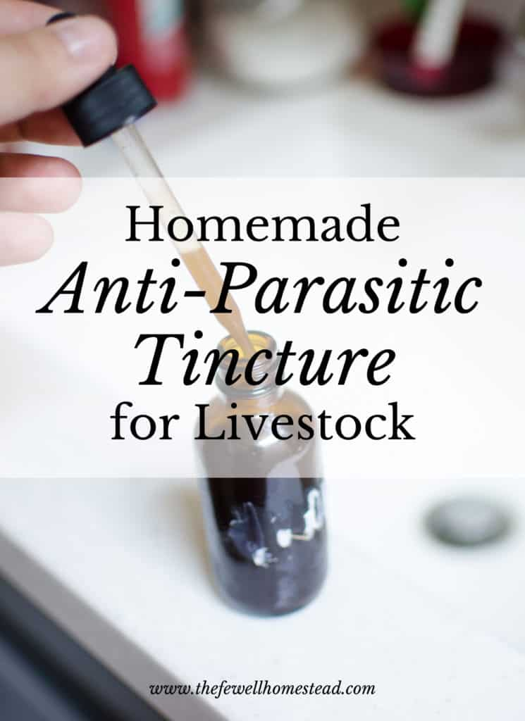 Worms and parasites are the number one killer of livestock. Prevent and treat with this herbal homemade anti-parasitic tincture for livestock