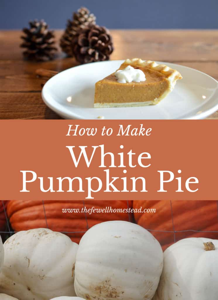 How to Make White Pumpkin Pie