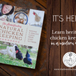 The Homesteader's Natural Chicken Keeping Handbook is Here!