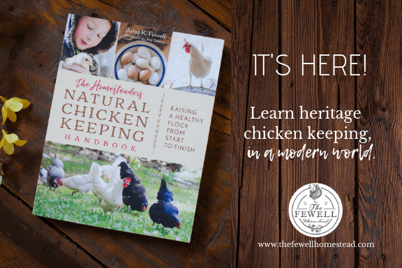 chickens and herbs