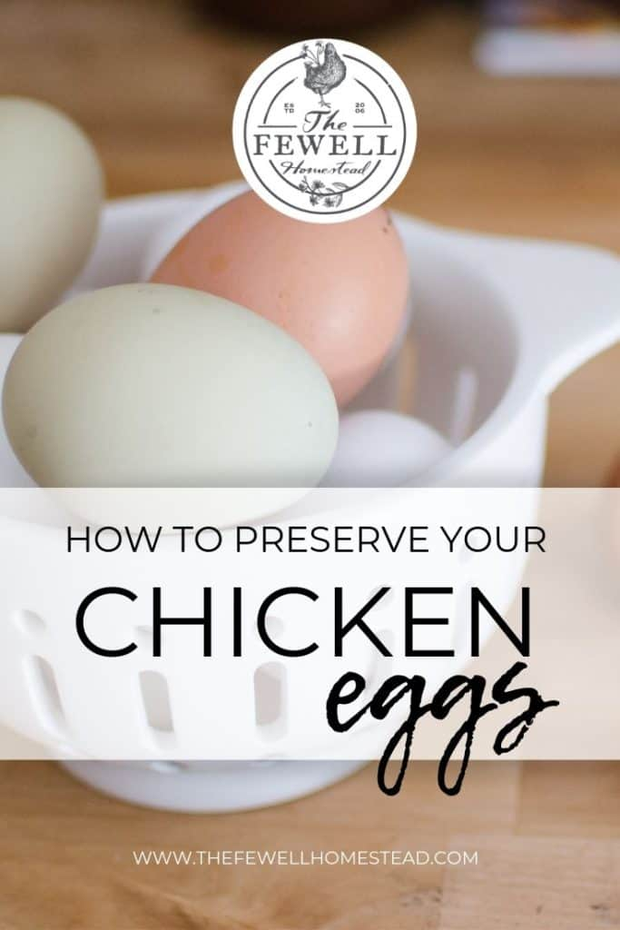 Are you overrun with eggs? Learn how to preserve your chicken eggs in just a few easy steps!