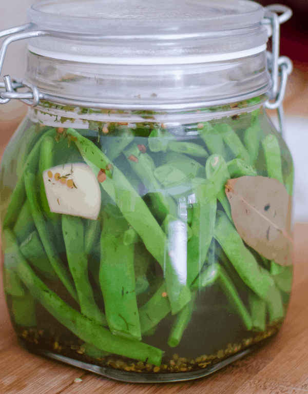 How to Make Lacto-Fermented Dilly Beans