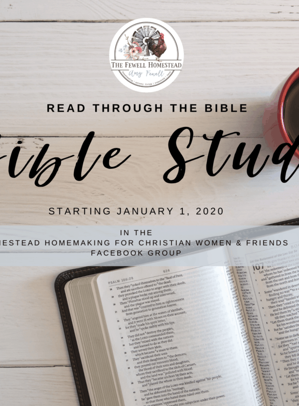 Read the Bible in a Year | Homestead Homemaking