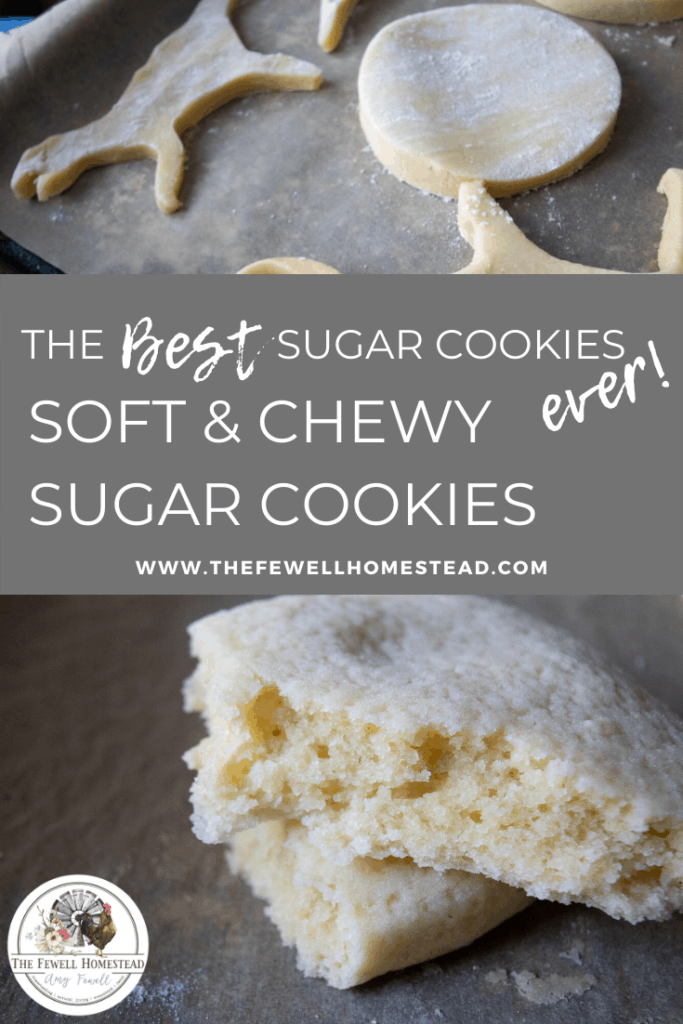 The BEST Sugar Cookies Ever! Soft and chewy sugar cookies