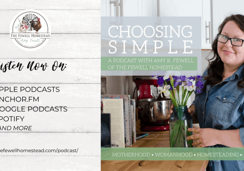 Announcing the Choosing Simple Podcast!