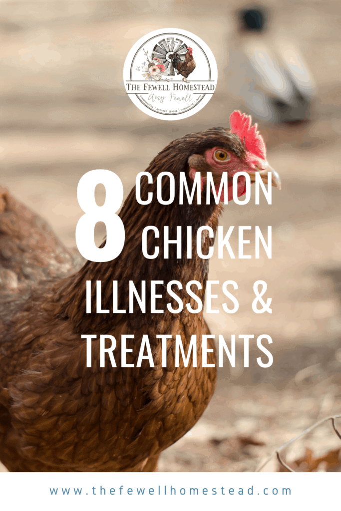 8 Common Chicken Illnesses and Treatments
