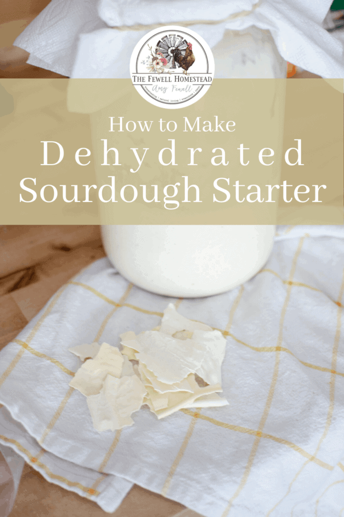 Dehydrate Your Sourdough Starter!