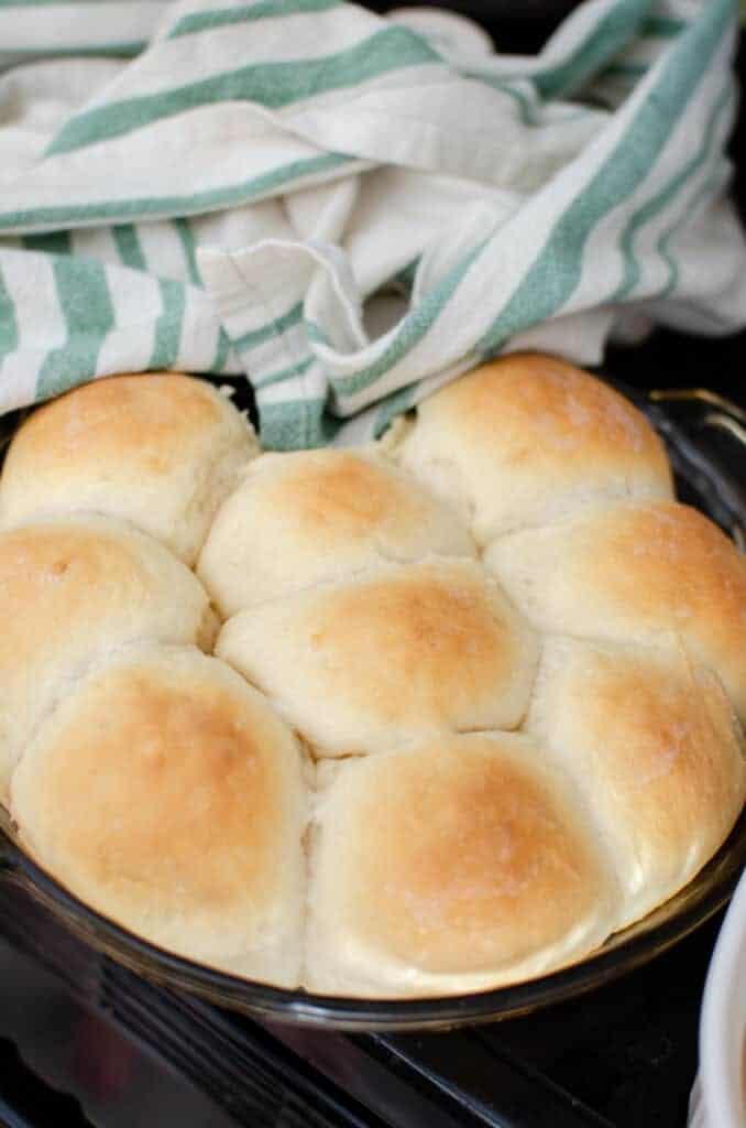 sourdough rolls recipe