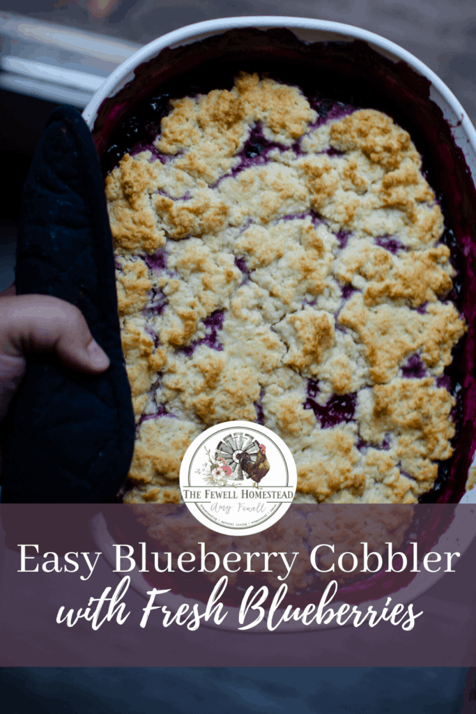 Easy Blueberry Cobbler with Fresh Blueberries and From Scratch Sweet Biscuits