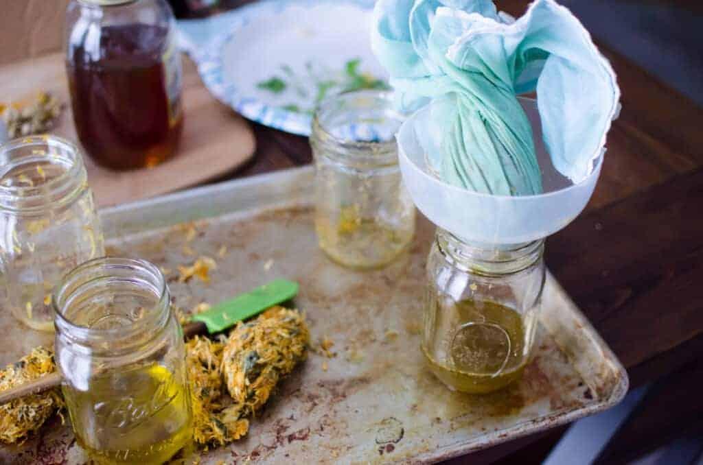 straining Calendula infused oil into jars