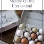 10 Ways to Earn Money Homesteading