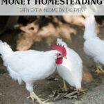 10 Ways to Earn Money on the Homestead