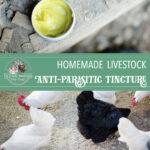 Anti-Parasitic Tincture for Livestock
