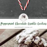 Peppermint Chocolate Crinkle Cookies