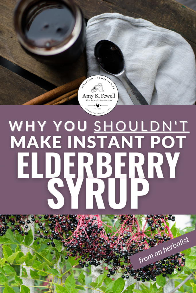 Why You Shouldn't Make Elderberry Syrup in an Instant Pot
