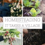 Homesteading: It Takes a Village