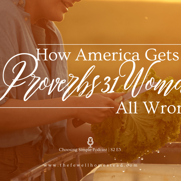 How America Gets the Proverbs 31 Woman Wrong