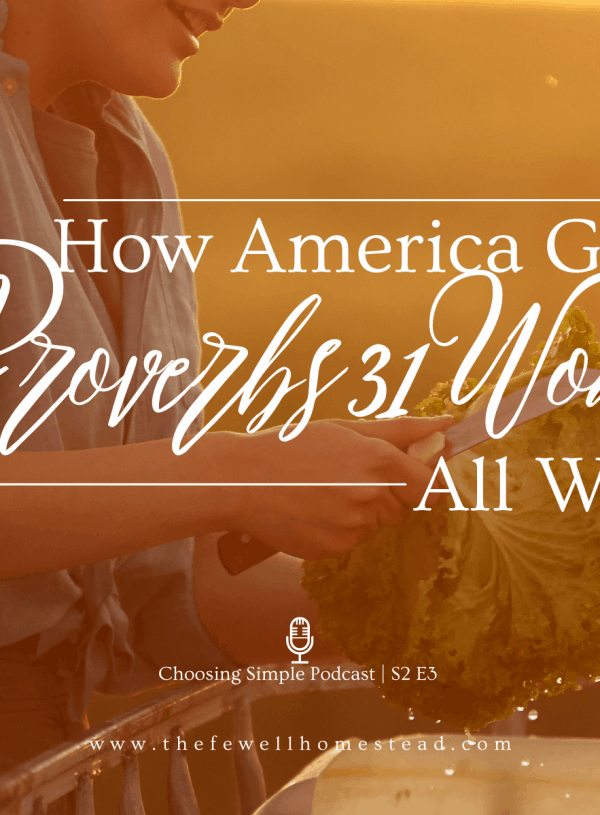 How America Gets the Proverbs 31 Woman Wrong | S2 E3