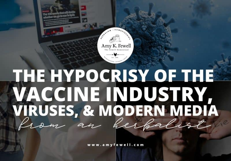 The Hypocrisy of the Vaccine Industry, Viruses, and Modern Media | From an Herbalist