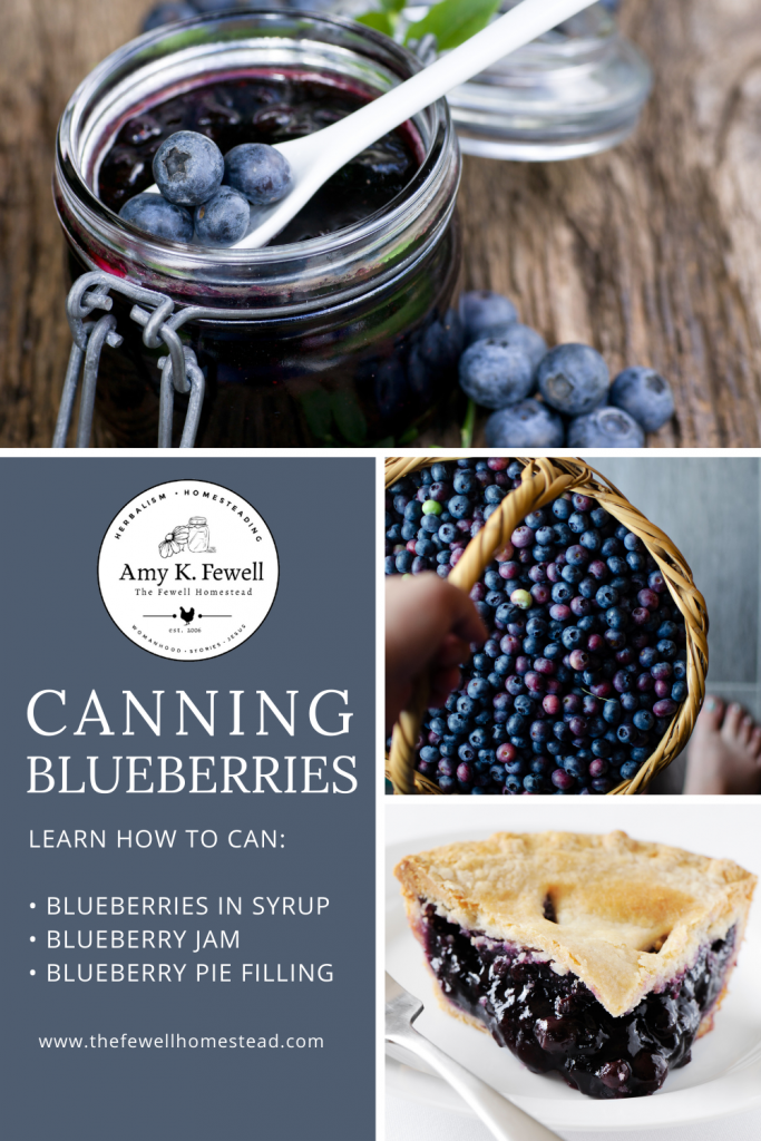 Learn how to make canned blueberry jam, blueberry pie filling, and canned blueberries